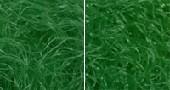 biofibres1440