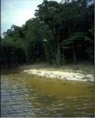 Sotna voda Tefe