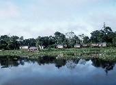 Amazon village405
