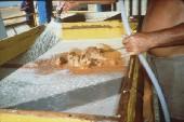 Pranje cist
