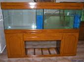 akvarij spredaj