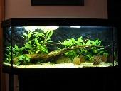 akvarij 009