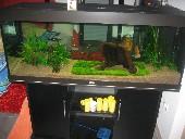 0 akvarij